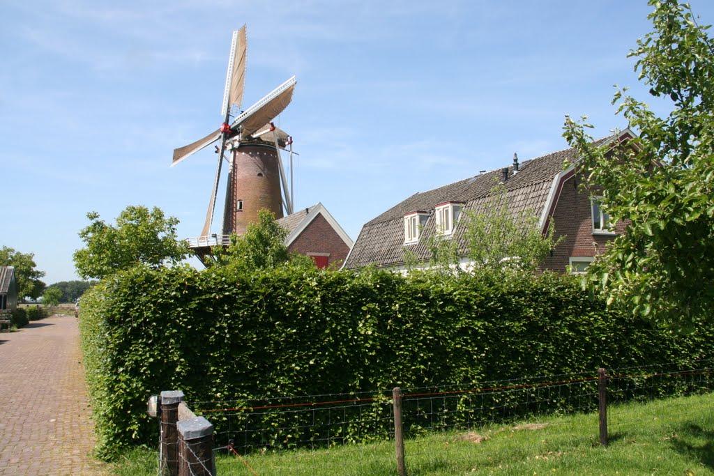 Werkhoven – Molen Rijn en Weert
