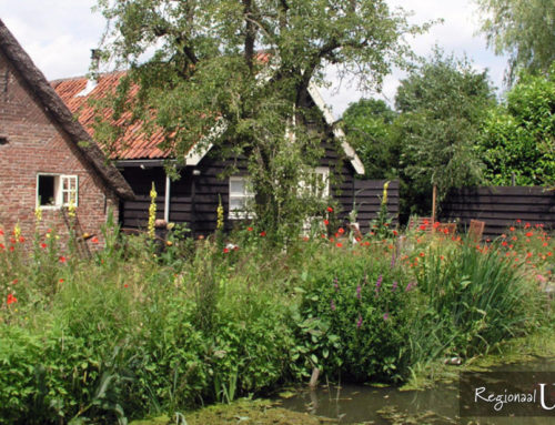 Bed and Breakfast De Wetering in Schoonrewoerd